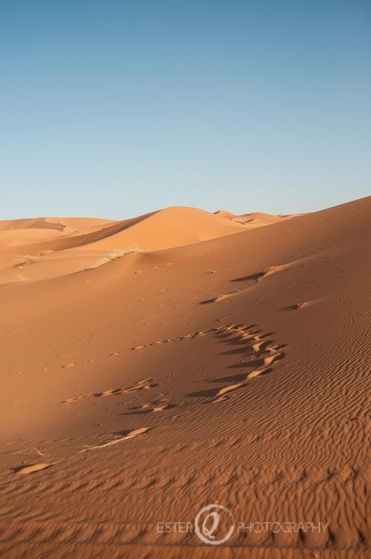 Viaje a Marruecos- desierto en Erg Chebbi, Errachidia