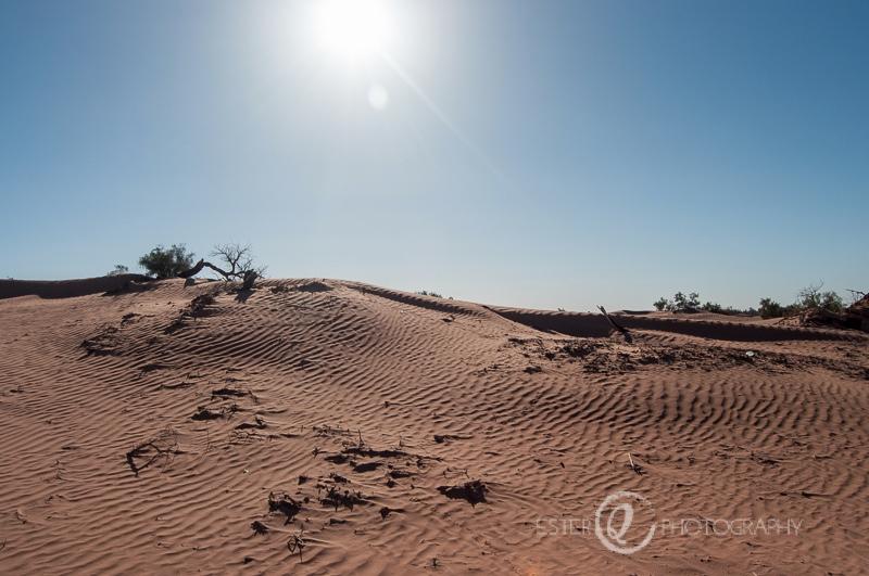 Viaje a Marruecos - desierto M'Hamid El Ghizlane, Zagora